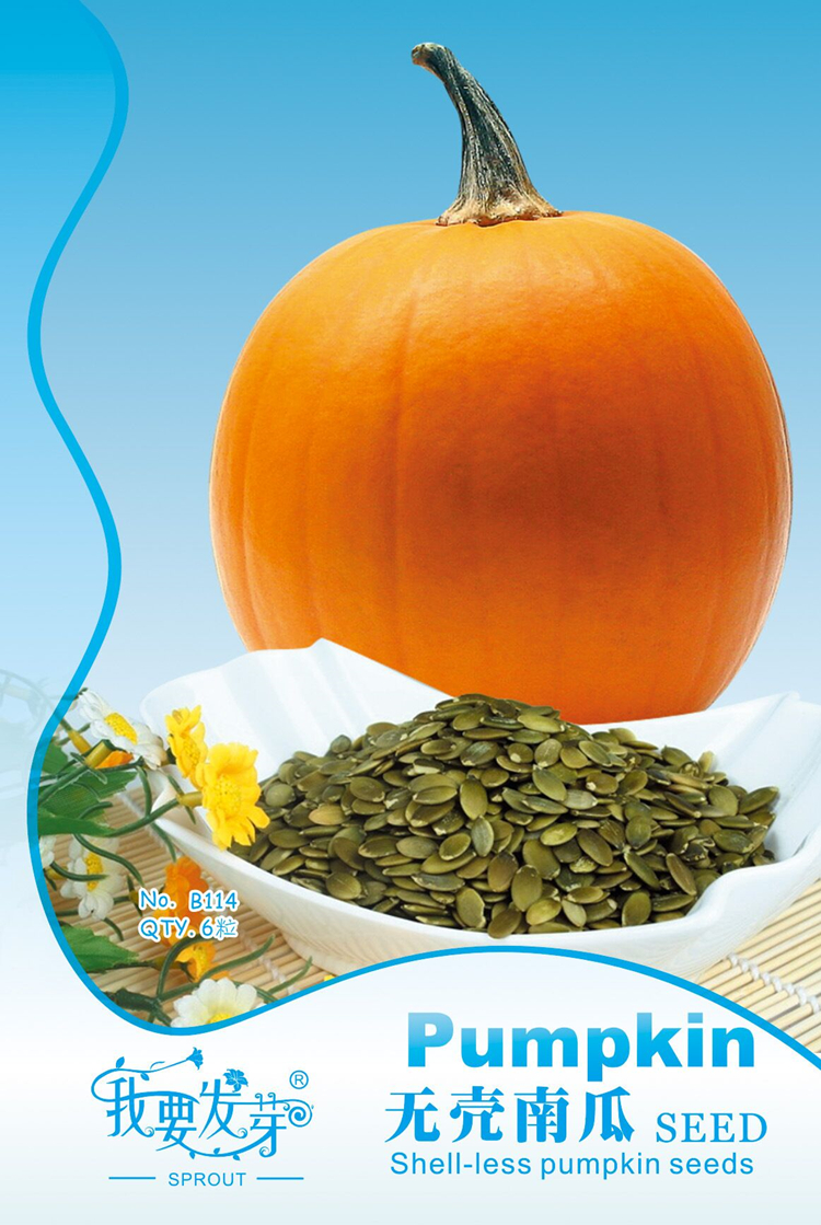 Vegetable seeds Pumpkin seeds without shells Bare kernel seed pumpkin seeds aquamarine 6 / package(China (Mainland))