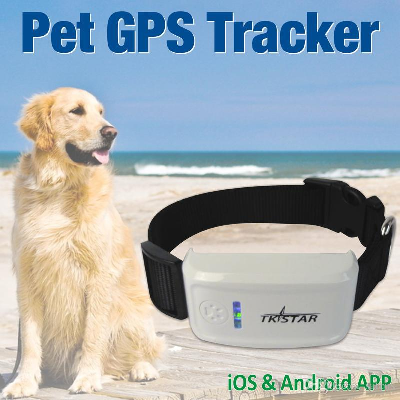 Mini GPS Tracker with Collar Waterproof Real Time Locator for Pets Dogs Cats Tracking Geofence Pet Products Security(China (Mainland))
