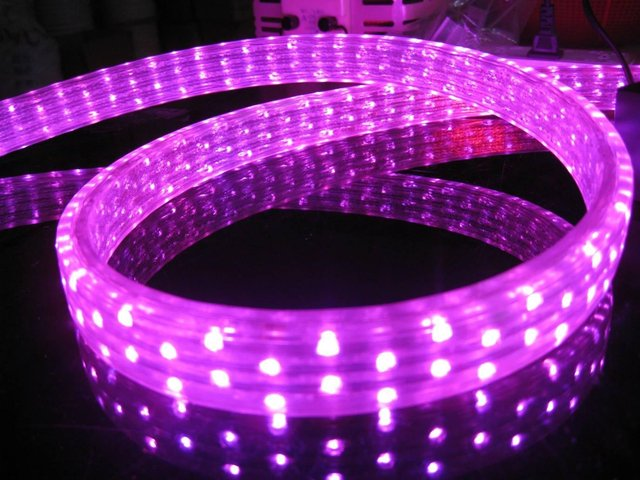 100m/roll LED 5 wires flat rope light;36leds/m;size:11mm*28mm;DC12V/24V/AC110/220V are optional;pink color