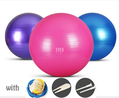65cm Trainers Gym Sport Yoga Ball Trainers bola de pilates bosu ball Fitball Fitness for Gymnastic bsk(China (Mainland))