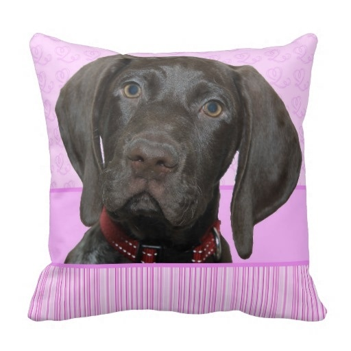 """Foreign Glossy Grizzly In Pink Throw Pillow Case (Size: 20"""" by 20"""") Free Shipping(China (Mainland))"""