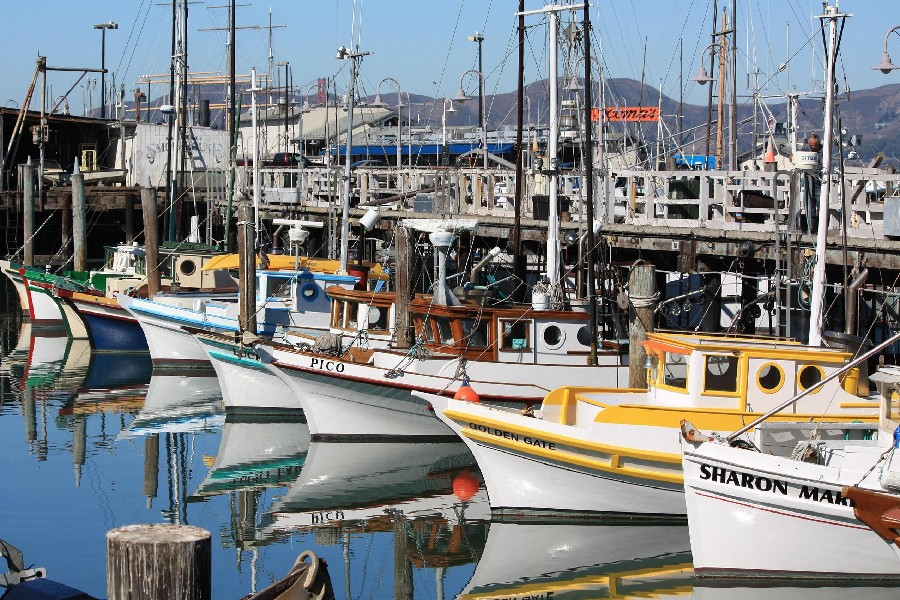 San Francisco California fishermanswharf City Landscape Scenery Poster Fabric Silk Posters And Prints for Home Decor 101(China (Mainland))