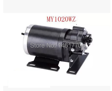 MY1020WZ 450W 36V permanent magnet motor, Electric tricycle motors ,electric motor bike - Sports & Entertainment store