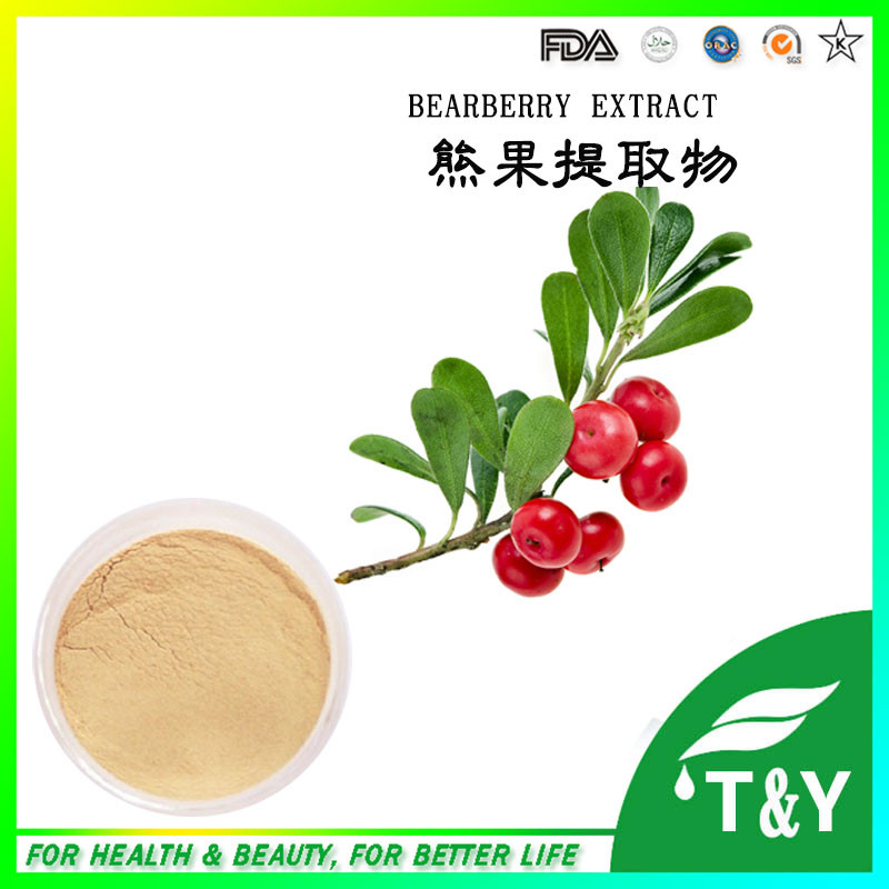 Natural 20%~99% Arbutin from Bearberry extract