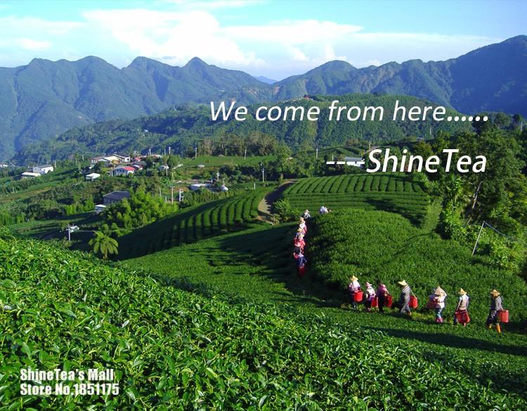 ShineTea Original Instant Tea Bubble Tea with Milk Tea Powder Boba HongKong Style Taste 100g China New – FREE EXPEDITED SHIPPING