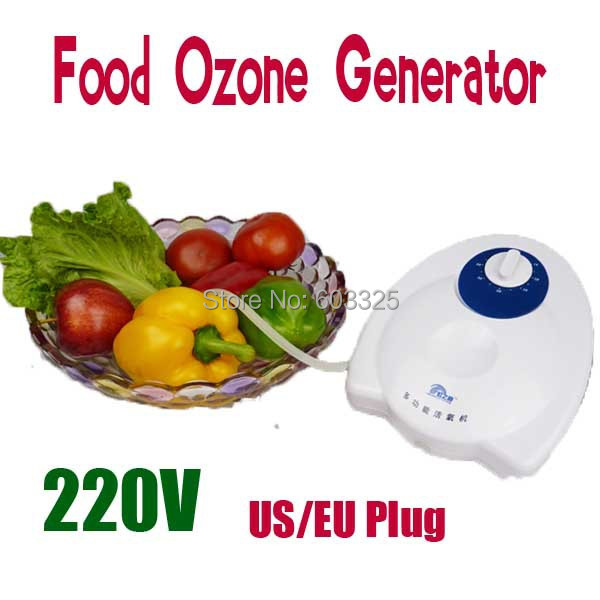400mg/h 110V /220V Food Ozone Generator Water Air Sterilizer Ozone Purifier Original Packing Free Shipping<br><br>Aliexpress