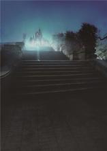 Castle photography backdrops photo studio vinyl 5x7ft or 3x5ft children stairs flight background props jiebj247