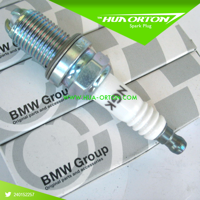 Free shipping! Platinum Spark plugs 12129071003 FOR BMW all models<br><br>Aliexpress