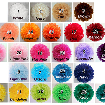 "Tissue Paper Pom Poms 10pcs/lot DIY 10""(25 CM) Decorative Flower paper Ball for Baby Shower Birthday Wedding Party Decorations(China (Mainland))"