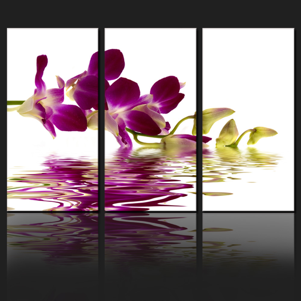 FREE SHIPPING Butterfly Orchid Picture,Phalaenopsis,Canvas Photo Decor Art,Framed and Stretched Floral Group Series Canvas Art(China (Mainland))