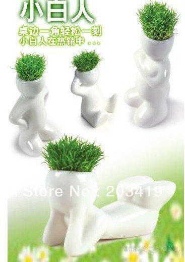 Creative Gift Plant Hair man Plant Bonsai Grass Doll Office Mini Plant Fantastic Home Decor pot+seeds 4 design wholesale(China (Mainland))