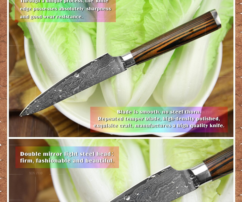"Buy XINZUO 5"" Utility knife Japanese VG10 Damascus kitchen knife paring fruit knife colour wood handle wholesale FREE SHIPPING cheap"
