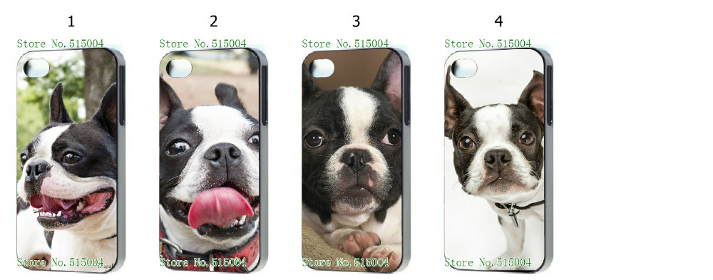 Hot 4pcs/lots wholesale Boston Terrier Dog Pet hard white case cover for iphone 5 5th 5S+free shipping(China (Mainland))