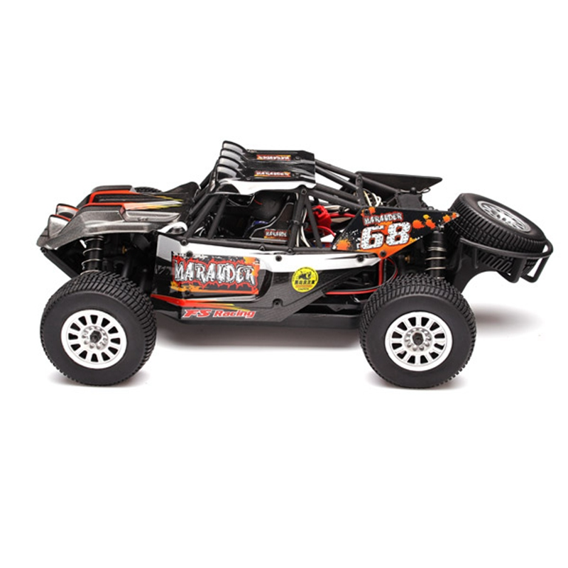 High Quality FS Racing 73902 1/18 4WD Brushed Desert Buggy RC Car Without Original Package(China (Mainland))