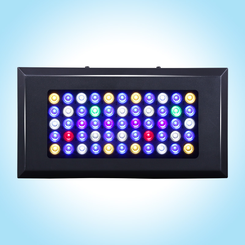 The newest and most competitive model Free Shipping 165W led aquarium light for reef marine tank with 3 years warranty(China (Mainland))