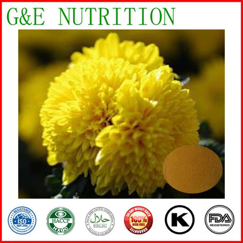 1000g Chrysanthemum/ Flos Chrysanthemi/ Chrysanthemum morifolium Extract with free shipping