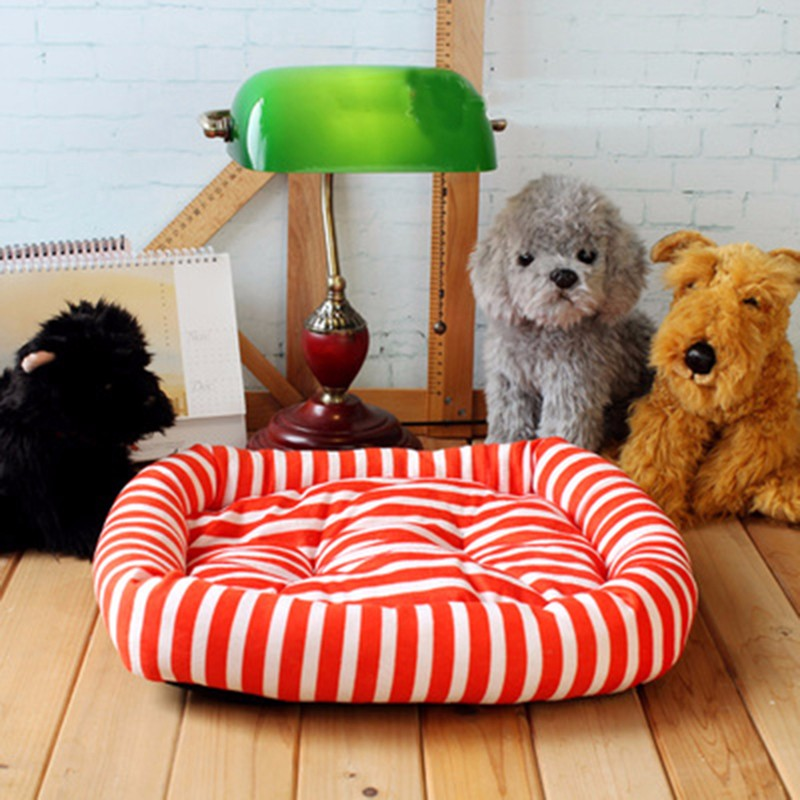 dog's bed800px-S8