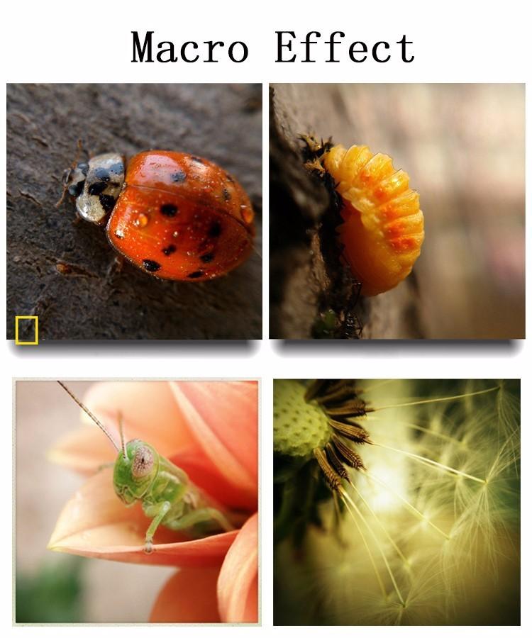 New Fish Eye Lenses + Wide Angle + Macro mobile Phone Lenses 3 in 1 Fisheye Universal Smartphone Lens For Ip6S plus 5S 4S xiaomi