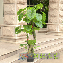 Artificial tree fake tree artificial flower living room decoration French silk flower plants large bonsai