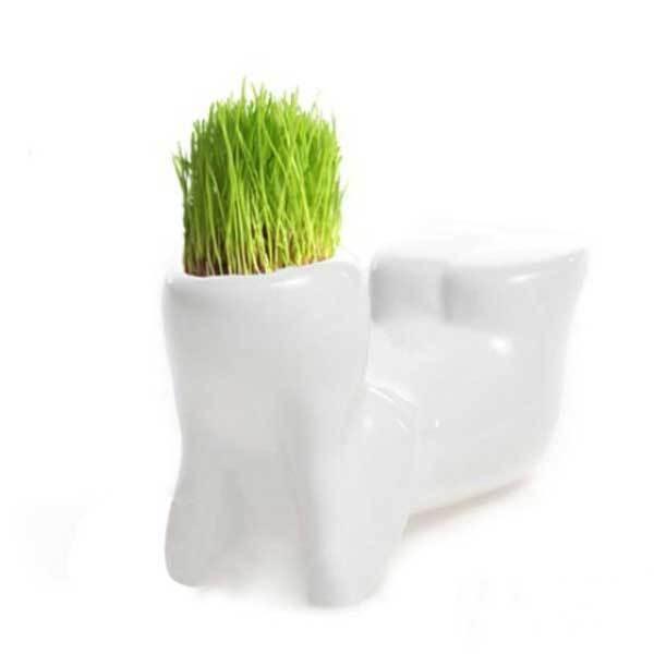 Aitkender Mini White Grass Doll Hair Men Garden Plant Ceramic Bonsai Pots(China (Mainland))