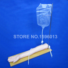 Buy Economic Injectable Training Arm Model Infusion Stand, IV Arm, Injection Teaching Model for $280.00 in AliExpress store