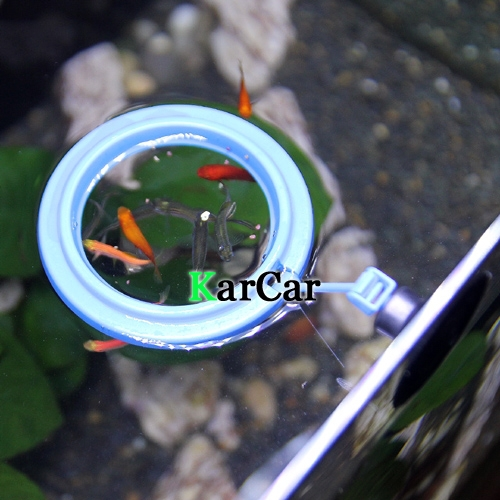 Fish ring images for Fish feeding ring