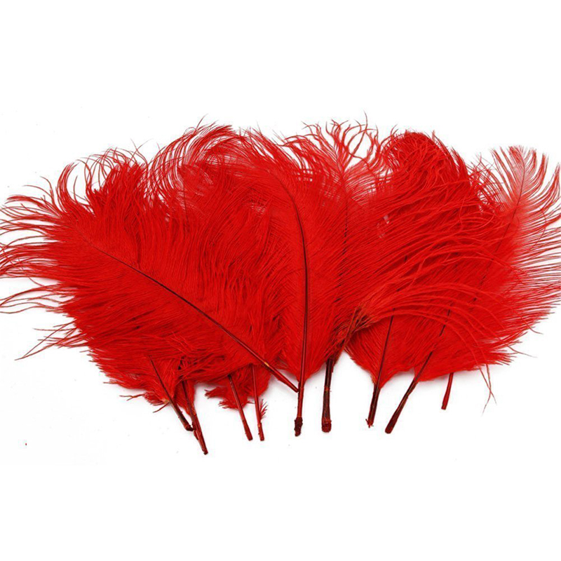 Brand Feather# Retail 10PCS high quality 15-20cm Red Ostrich Feathers Free shipping(China (Mainland))
