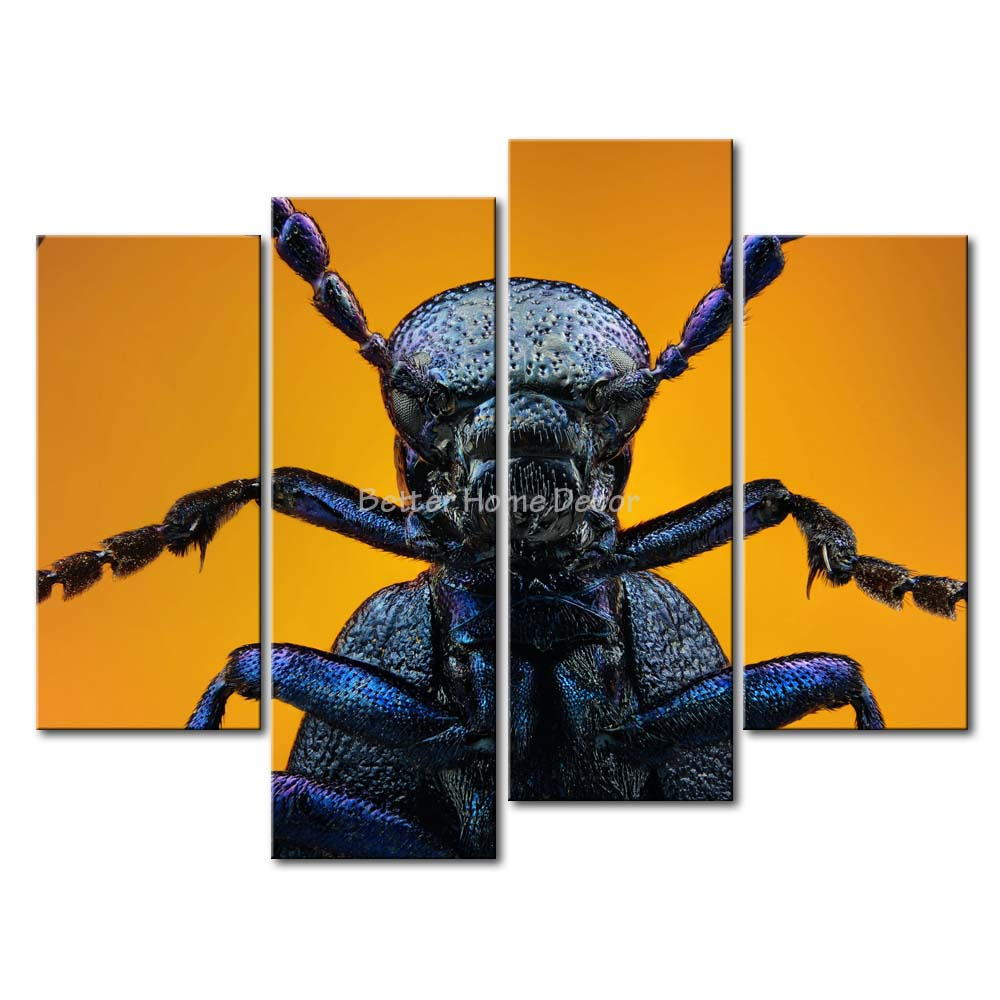 3 Piece Wall Art Painting Black Oil Beetle Picture Print On Canvas Animal 4 5 The Picture Decor Oil For Home Decoration Prints(China (Mainland))