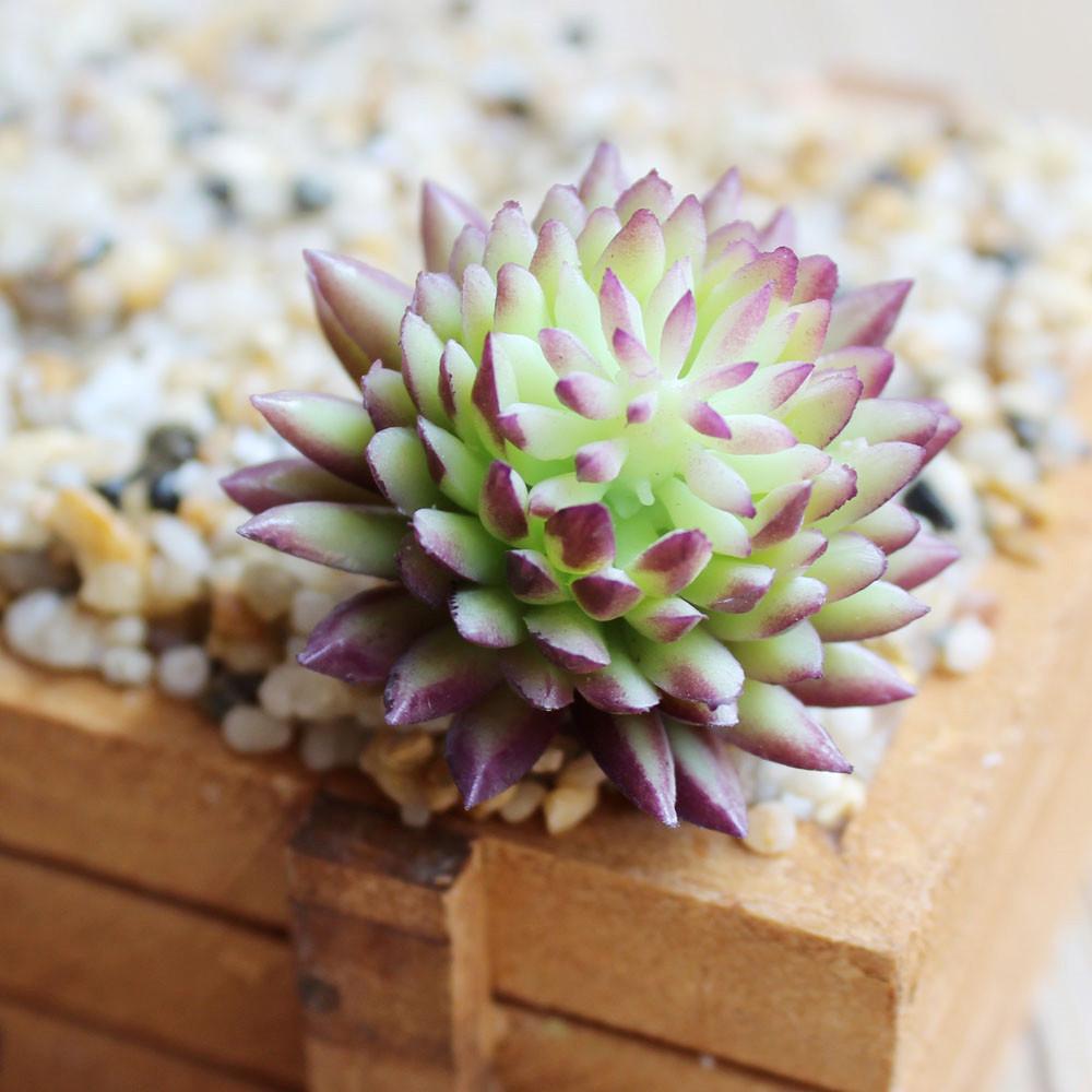 Artificial Mini Succulent Plants Realistic Large Fake Cactus Stems Imitation Home Garden Wall Decor Faux Succulents Arrangements