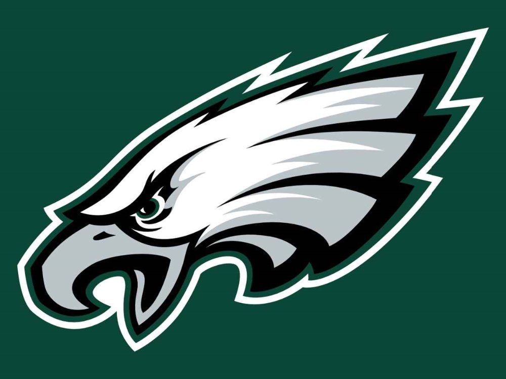 Philadelphia Eagles Flag 3ft x 5ft Polyester Banner 90x150cm white sleeve with 2 Metal Grommets ,Minnesota Vikings 11171(China (Mainland))