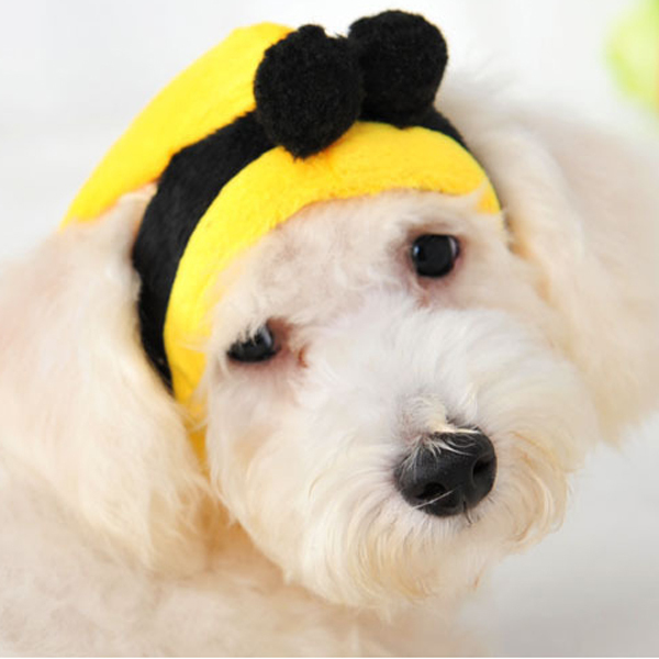 Taiwan Design Cotton Bee Animal Cosplay Pierced Ears Winter Hats for Dogs Knitted Sweater Cat Caps Warm Yorkieshire Yellow S/M/L(China (Mainland))