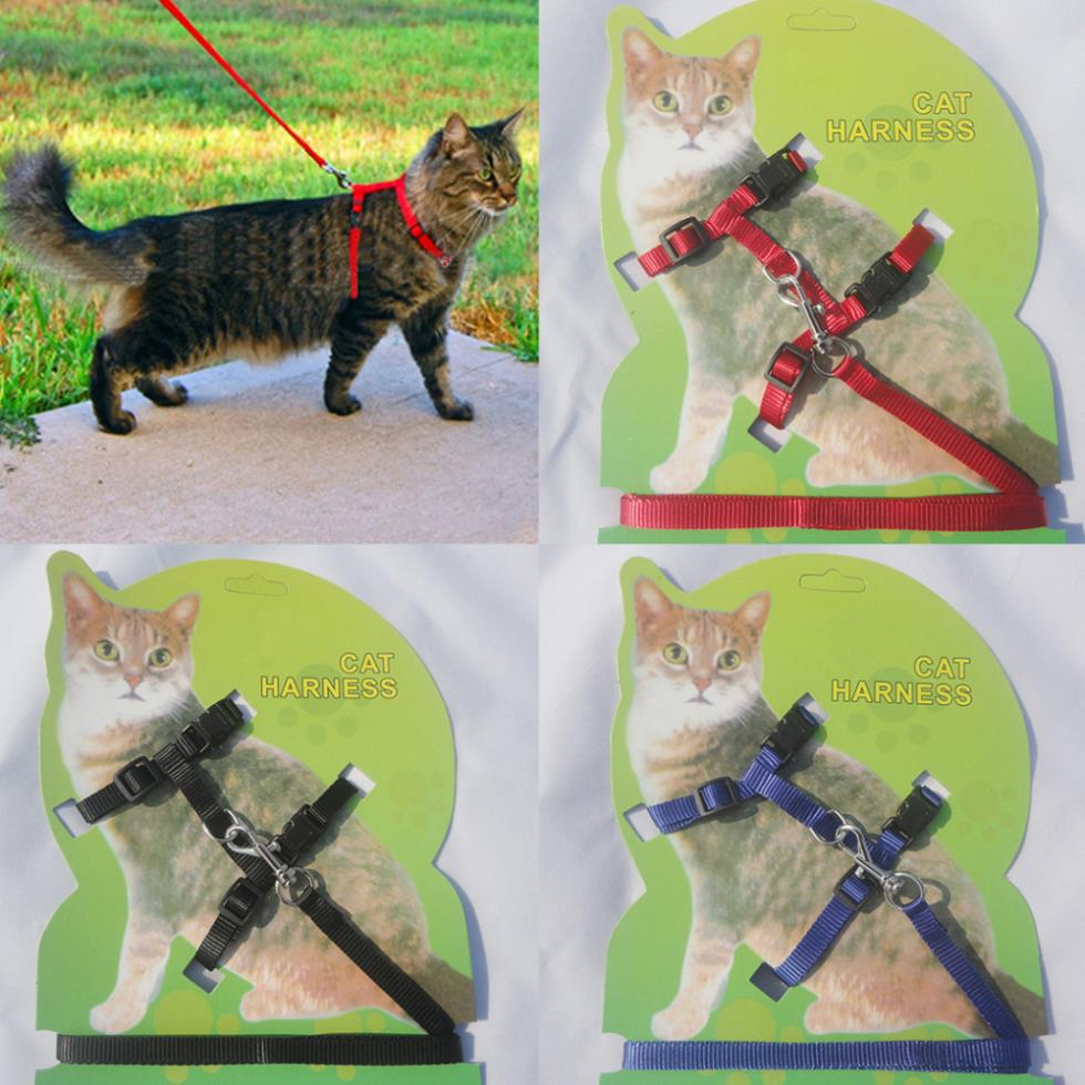 Nylon Pet Harness Nylon Adjustable Safety Control Restraint Cat Lead Leash Collar Kitten Belt Rope Strap(China (Mainland))