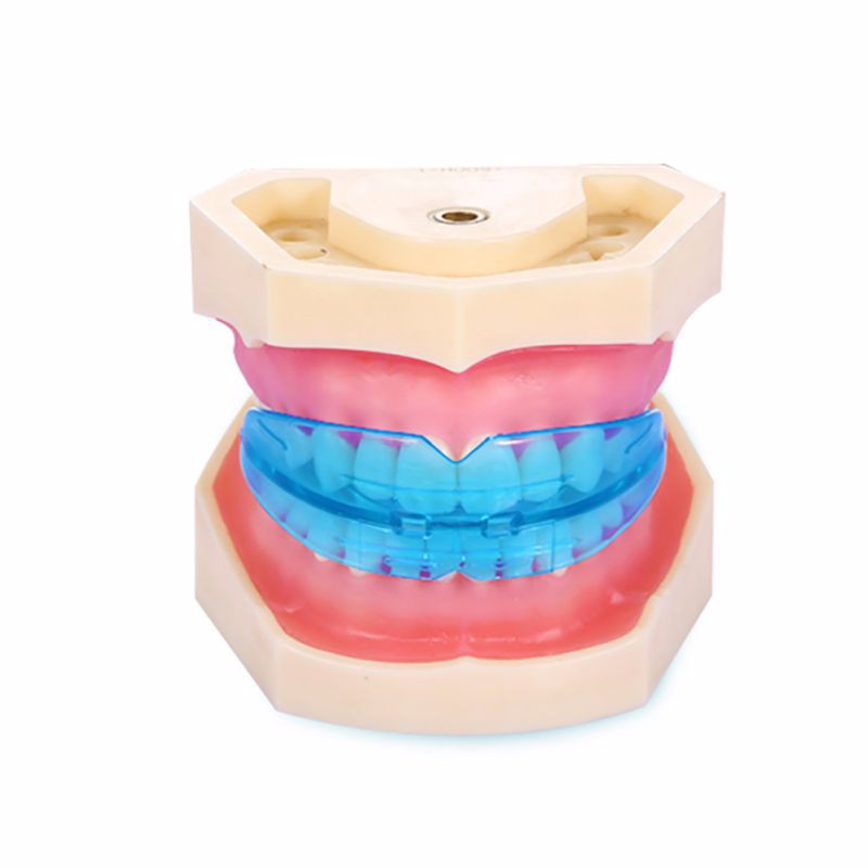 Professional Dental Tooth Teeth Orthodontic Appliance Trainer Alignment Braces Mouthpieces