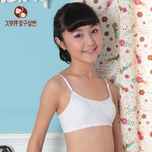 underwear for growth period
