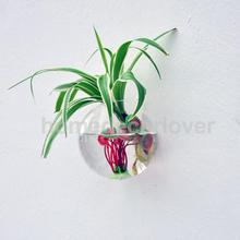 12cm Ball Shape Hanging Glass Hydroponic Flower Vase Terrarium Container DIY(China (Mainland))