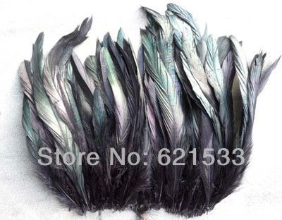 200pcs/lot 6-8inch 15-20cm Beautiful black rooster feathers , bulk, lot, wholesale, feather supply, hair extensions,freeshipping(China (Mainland))