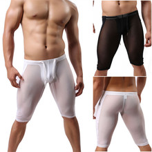 Men's underwear transparent nylon silk gauze pants fitness pants Shorts BRWZ(China (Mainland))