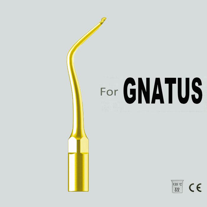 SBG2T, GNATUS CAVITY PREPARATION, PEDIATRIC TREATMENT, GOLD TIP, DIAMOND AND TITANIUM PLATED(China (Mainland))