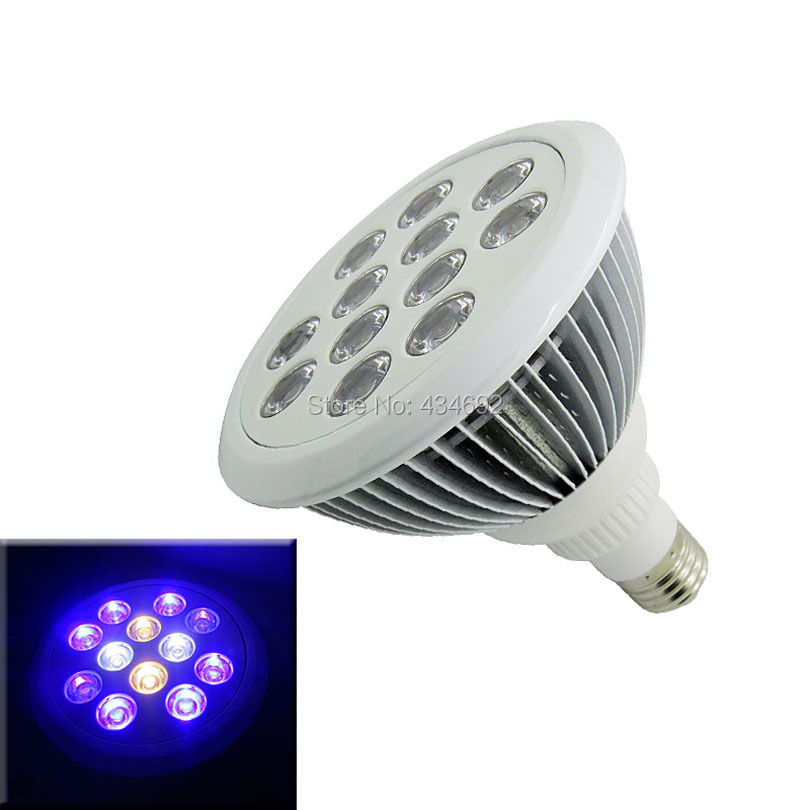 Cool Blue Light Bulbs: 12W E27 Par 38 Par38 Led Spotlight Bulb Light Royal Blue+Cool White + Warm,Lighting