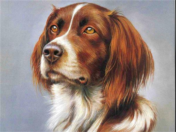Sad puppy dog mosaic diy diamond painting cross stitch full square drill canvas rhinestone diamond mosaic room wall sticker