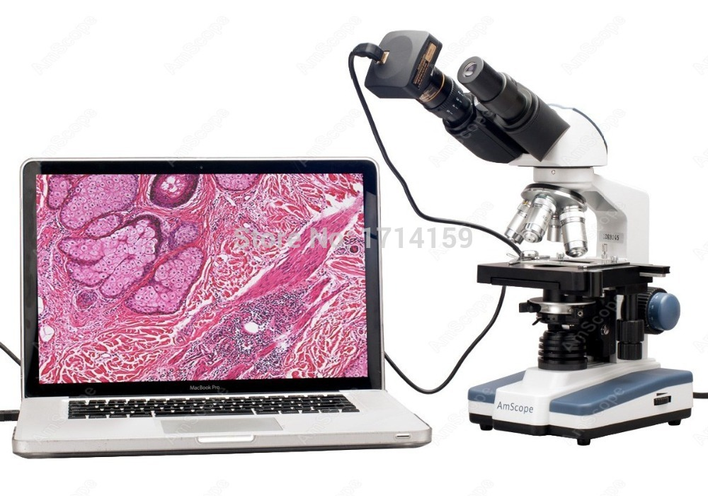 Clinic Hospital-AmScope Supplies 40X-2000X LED Binocular Digital Compound Microscope w 3D Stage and 9MP Camera Watch<br><br>Aliexpress