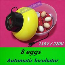 2015 Mini Automatic Incubator 8 eggs Duck Goose Bird Incubator Family hatch tool Experimental Teaching Equipment Free shipping