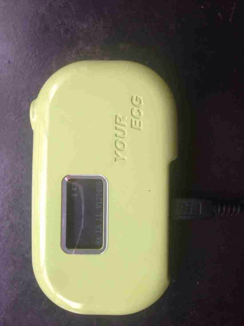 12-leads ECG holter/Mobile ECG(China (Mainland))