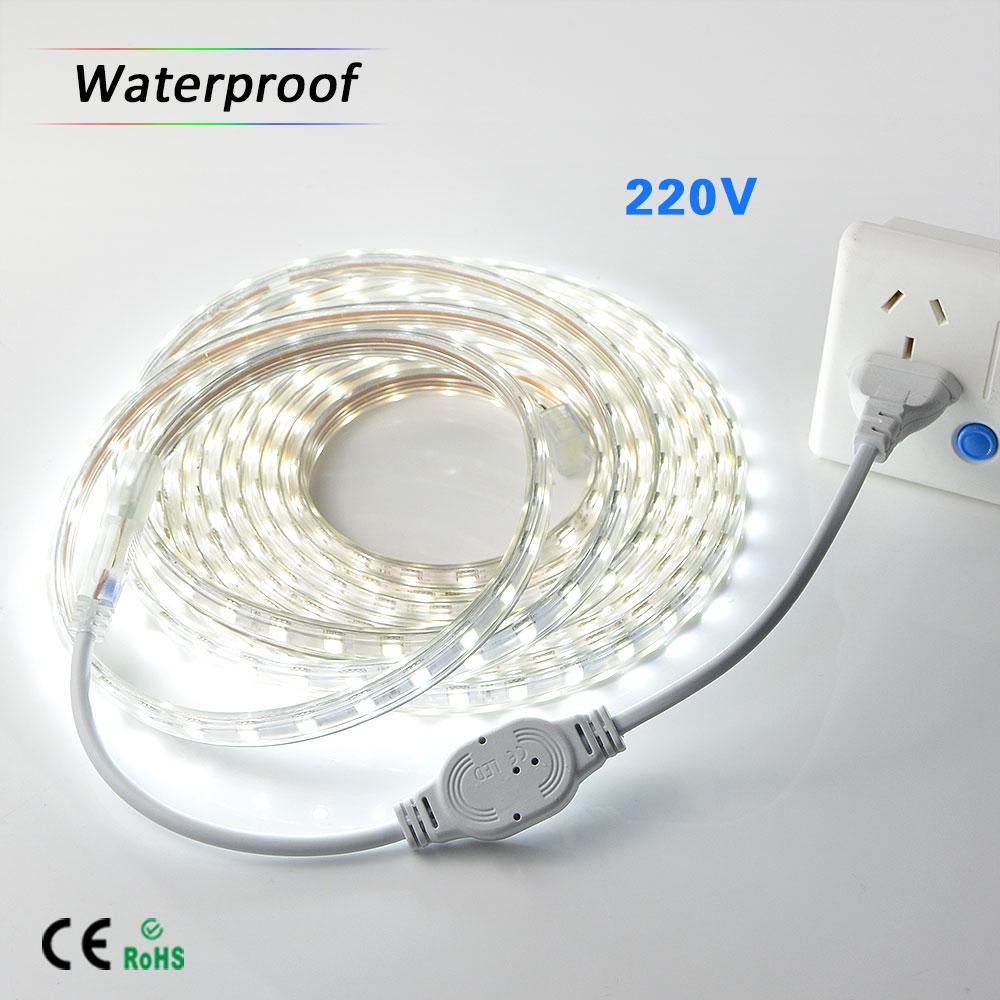 5050 SMD LED Strip 220V IP67 Waterproof flexible light DIY 1M/2M/3M/4M/5M 60 leds/m White / Warm White Tape Home Decoration Lamp(China (Mainland))