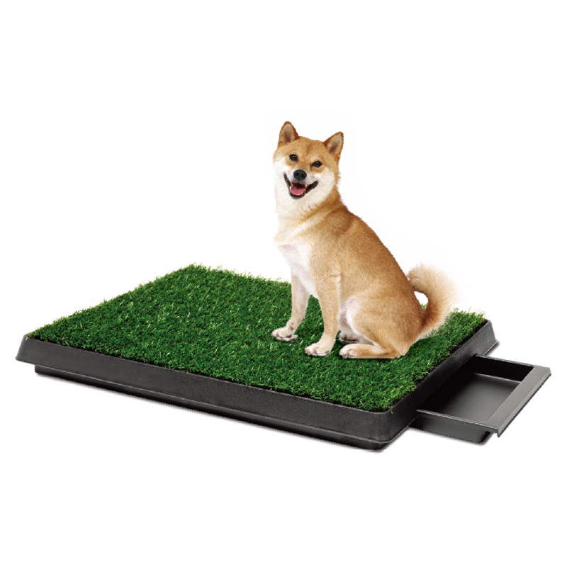 New 2016 Pet Potty Puppy Dog Toilet Training Mat Patch ...
