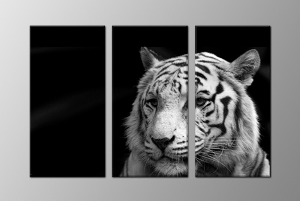 Black and white tiger, large HD canvas print for living room, wall art picture photo gift painting artwork