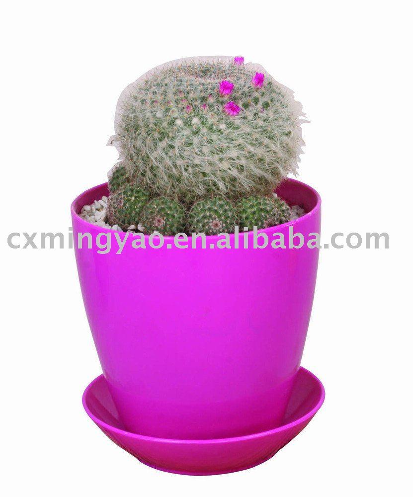 new 100 pp colorful plastic plant pots wholesale in. Black Bedroom Furniture Sets. Home Design Ideas