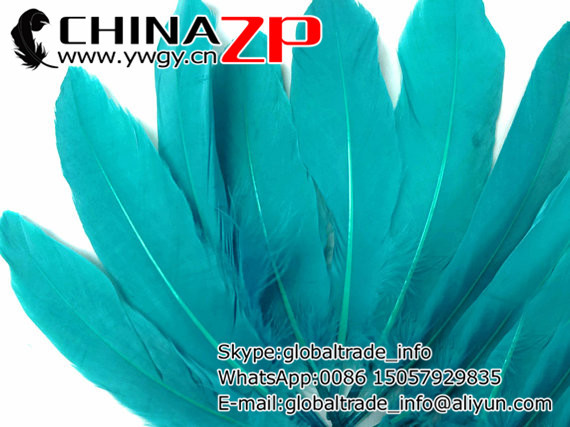 Wholesale from Factory www.ywgy.cn 50pieces/bag/lot Dyed Turquoise Goose Feathers(China (Mainland))