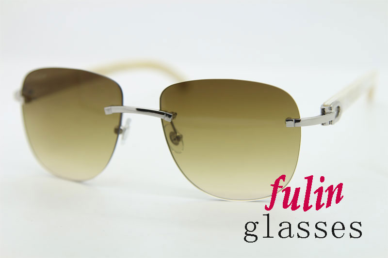 Stylish Glasses 2015 Photochromic Sunglasses With White Buffalo Horn Tips T8300680 Size 55-18-140mm