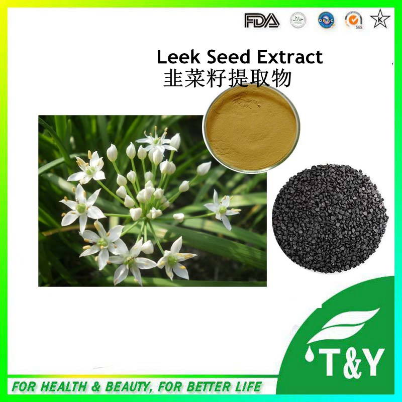 Herbal medicine Leek Seeds extract/ /Tuber Onion Seed Extract 500g/lot<br><br>Aliexpress